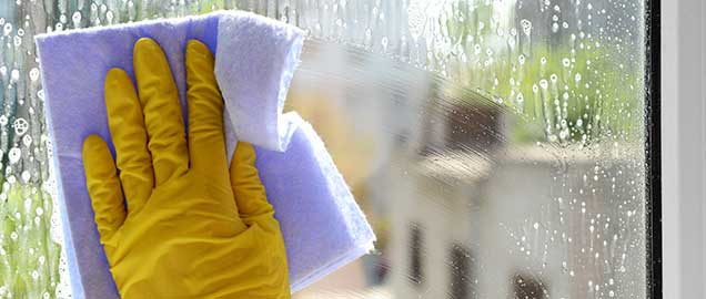 Diy: Window Cleaning